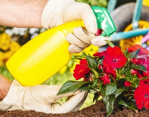Insecticides, Fungicides, Pesticides
